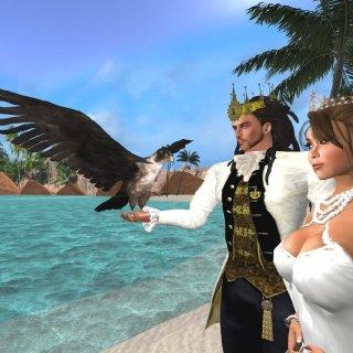 falconry 2