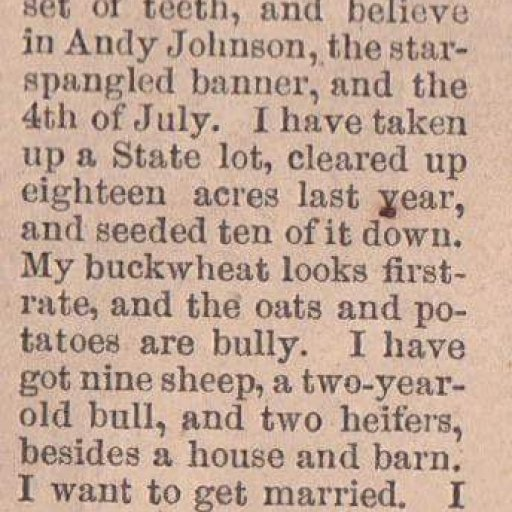 Man looking for a wife in 1865
