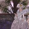 Grey ladyes_001 copy