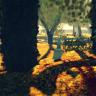 Potsdam Woods in Autumn