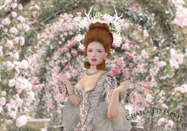 Rococo Suzette AD.png